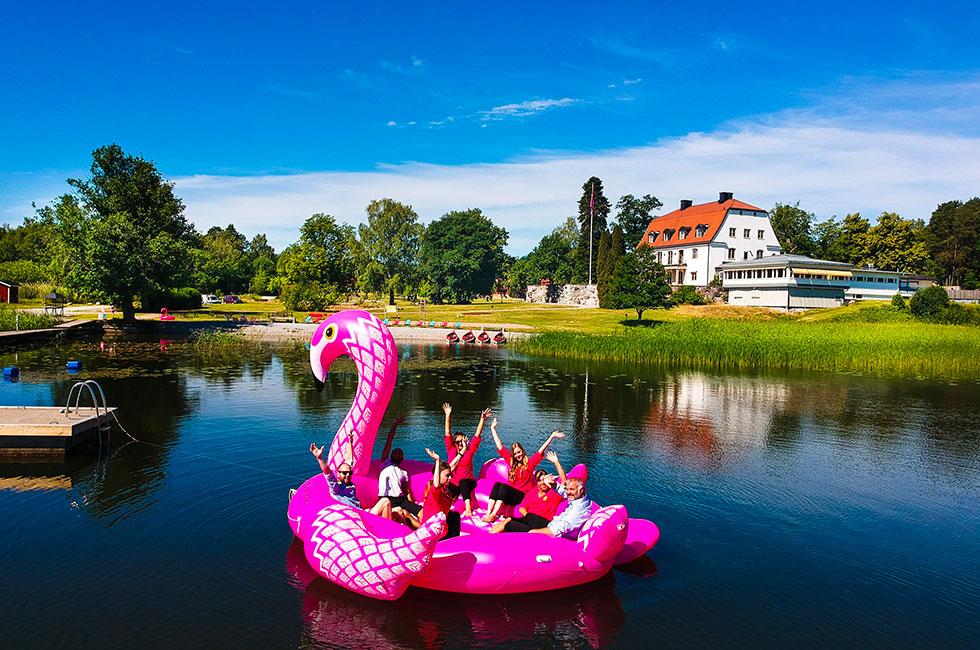Flamingo för sex personer i möte