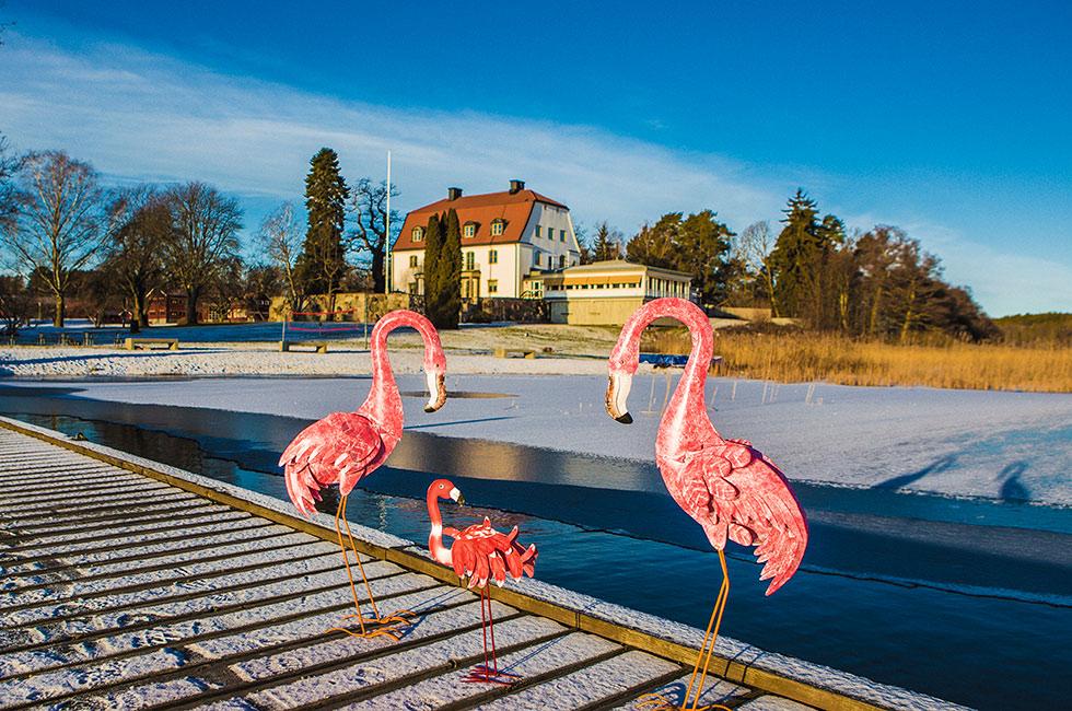 Tammsviks Herrgård vid Mälaren
