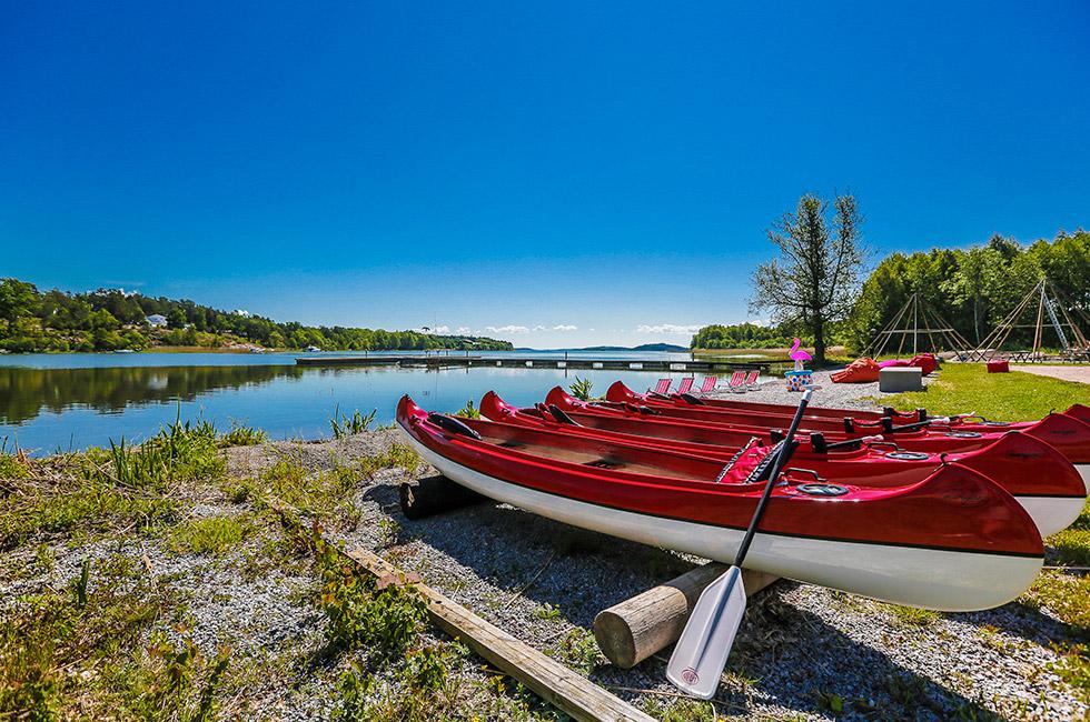 Kanoter - Kanadensare vid Mälarens strand på Happy Tammsvik